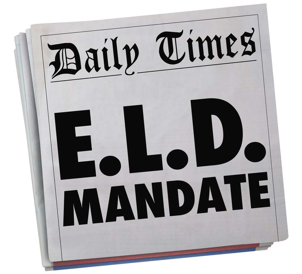 Why must ELD Training apply not only to truckers but to the whole trucking personnel?
