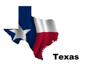 Texas dot number dot operating authoritydot operating for Texas motor carrier credential system